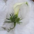 buttonholes & corsages -004