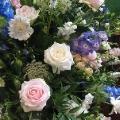 Summer Flowers-025
