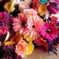 Elsies flowers